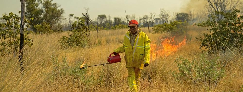 Fire Management